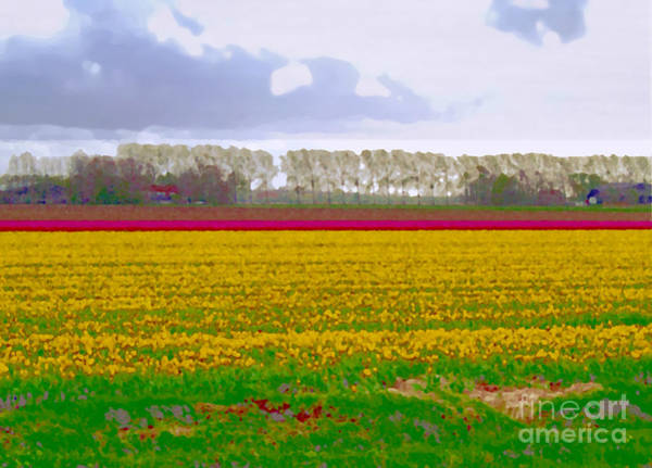 Photograph - Yellow Meadow by Luc Van de Steeg