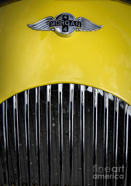 Photograph - Yellow Morgan by Ken Johnson