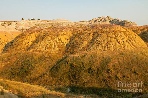 Yellow Mounds Overlook Badlands National Park Art Print