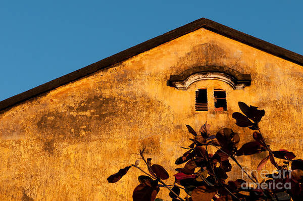 Photograph - Yellow Ochre Gable by Rick Piper Photography