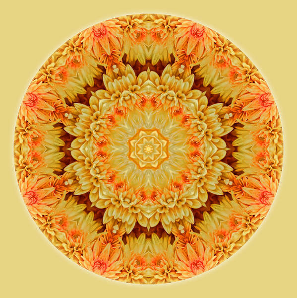 Yellow Orange Mum Mandala Art Print