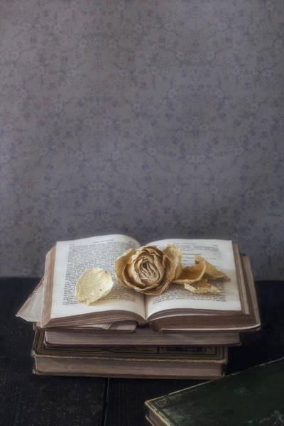 Wall Art - Photograph - Yellow Rose by Joana Kruse