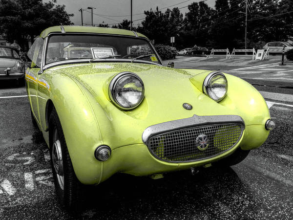 Photograph - Yellow Sprite 001 by Lance Vaughn