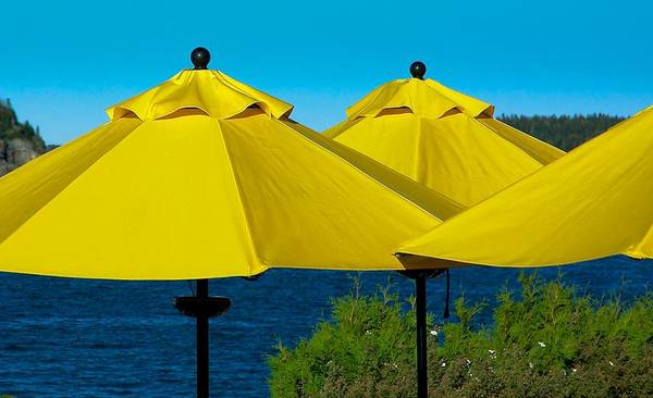 Photograph - Yellow Umbrellas by Stuart Litoff