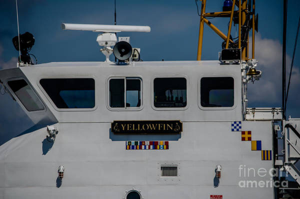 Photograph - Yellowfin by Dale Powell