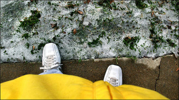 Photograph - Yellowjacketcomp 2009 by Glenn Bautista