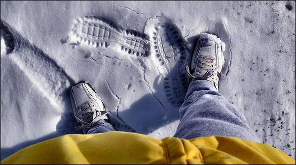 Photograph - Yellowjacketcomp2 2009 by Glenn Bautista