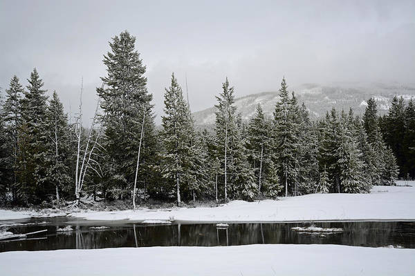 Photograph - Yellowstone Gibbon Meadows Spring Snow And Reflection by Bruce Gourley
