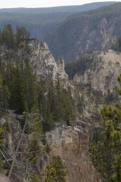 Photograph - Yellowstone Grand Canyon by Jack R Perry