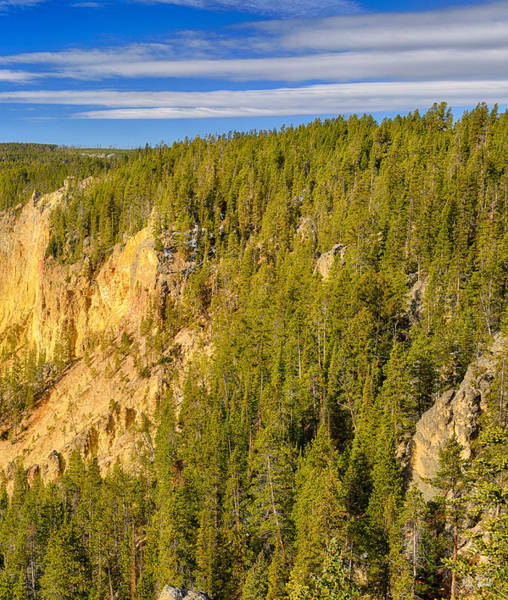 Photograph - Yellowstone Lookout Point Right Panel by Greg Norrell