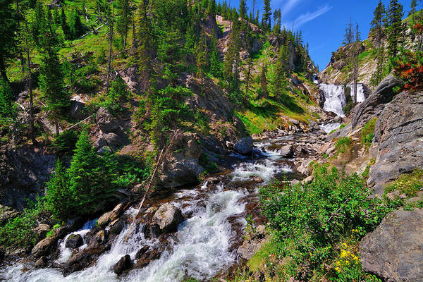 Photograph - Yellowstone Mystic Falls by Greg Norrell
