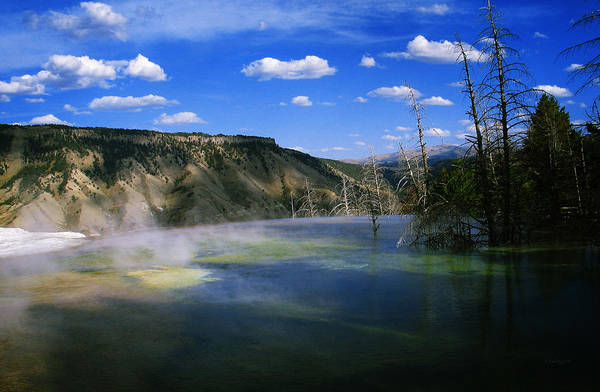 Photograph - Yellowstone National Park 3 by Xueling Zou