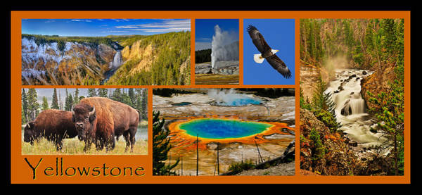 Art Print featuring the photograph Yellowstone National Park by Greg Norrell