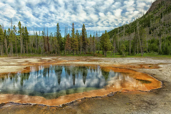 Photograph - Yellowstone National Park by Patrick Leitz