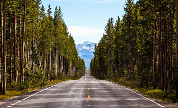 Photograph - Yellowstone Open Road by Adam Pender