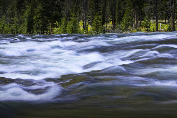 Photograph - Yellowstone River At The Lehardy Rapids by Randall Nyhof