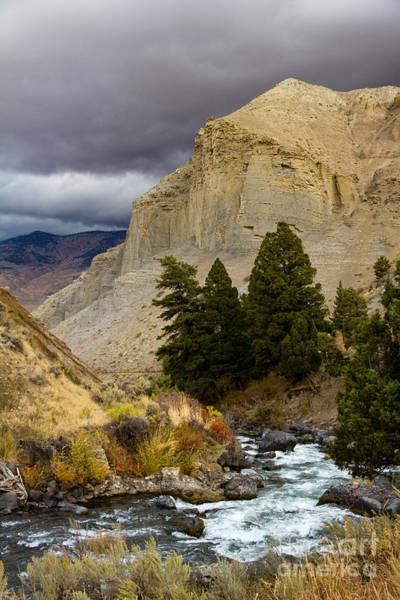 Photograph - Yellowstone's Beauty by Lori Dobbs