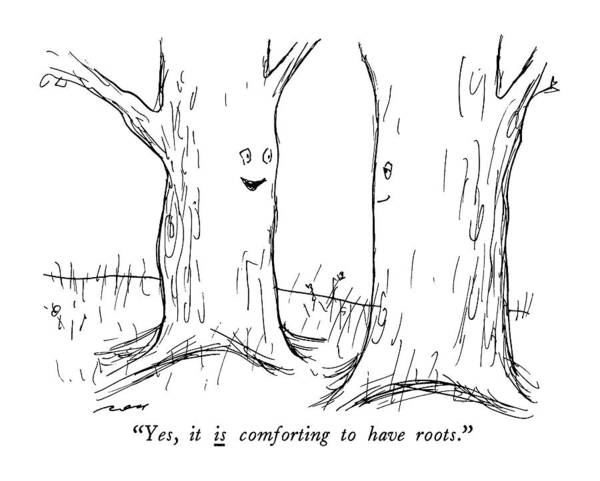 Tree Drawing - Yes, It Is Comforting To Have Roots by Al Ross