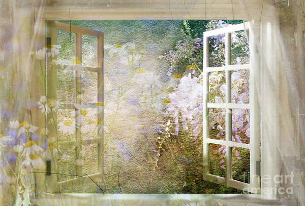 Curtain Digital Art - Yesterday Today And Tomorrow by Shanina Conway