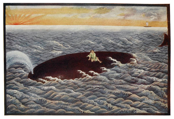 Save The Whales Wall Art - Drawing - Yoda Emon, A Fisherman, Is  Saved by Mary Evans Picture Library