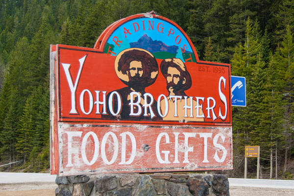 Photograph - Yoho Brothers by Guy Whiteley