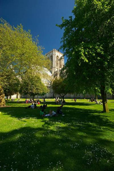 Photograph - York Minster by Stephen Taylor