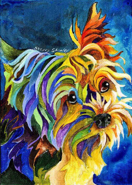 Painting - Yorkie by Sherry Shipley