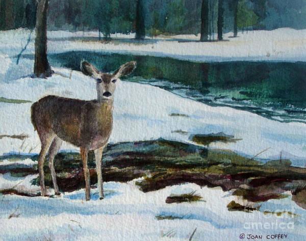 Painting - Yosemite Deer by Joan Coffey