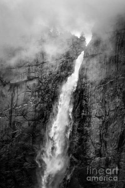 Photograph - Yosemite Fall by Anthony Bonafede