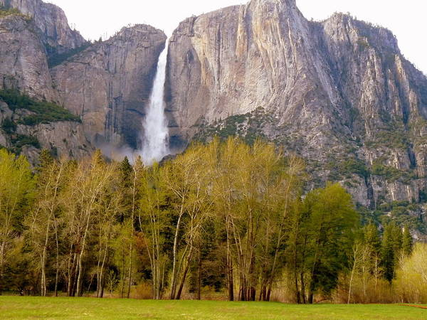 Photograph - Yosemite Falls And Trees by Jeff Lowe