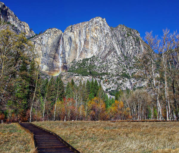 Photograph - Yosemite Falls From Cook's Meadow by Scott McGuire