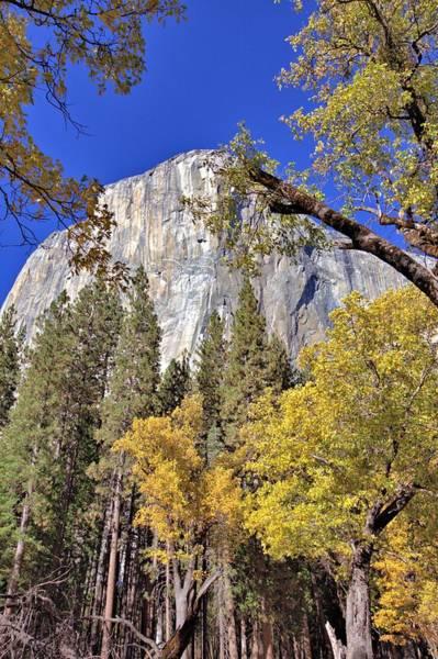 Photograph - Yosemite In November by Gordon Elwell
