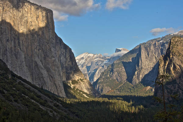 Photograph - Yosemite Magnificence by Steven Lapkin