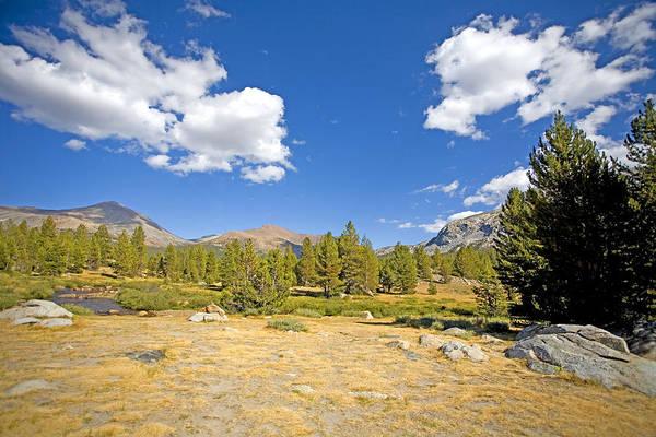 Tioga Photograph - Yosemite Morning by Bonnie Bruno