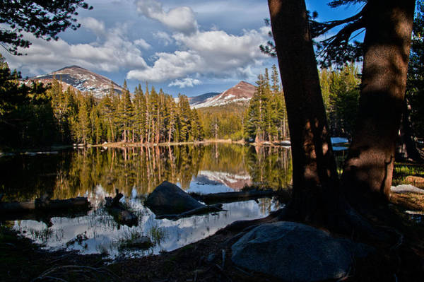 Photograph - Yosemite Reflecting Pond by Cat Connor