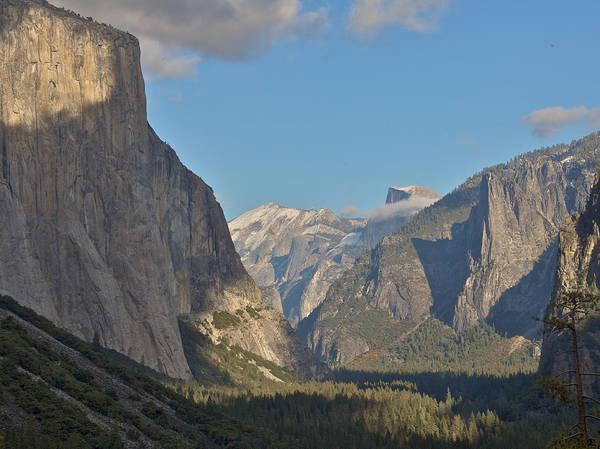 Photograph - Yosemite by Steven Lapkin