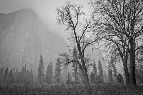 Photograph - Yosemite Storm by Priya Ghose