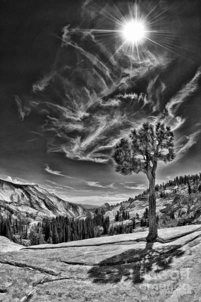 Photograph - Yosemite Tree Wispy Dark Sky by Blake Richards