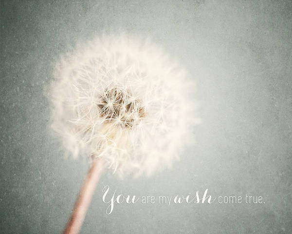 Wall Art - Photograph - You Are My Wish Come True Typography Quote by Lisa Russo
