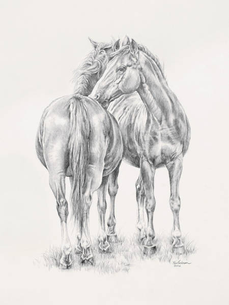 Drawing - You Scratch My Back I'll Scratch Yours by Kim Lockman