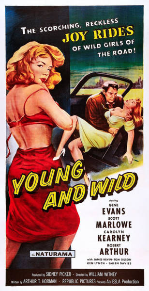 1958 Movies Photograph - Young And Wild by Everett