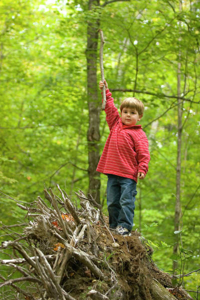 Ossipee Wall Art - Photograph - Young Boy Playing In Forest In Forest by Justin Bailie