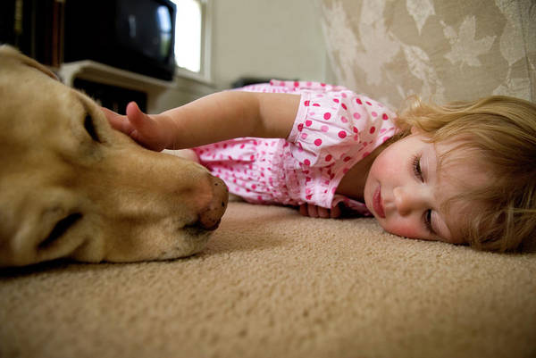 Pet Care Photograph - Young Girl And Dog Lying On Carpet by Peter Dennen