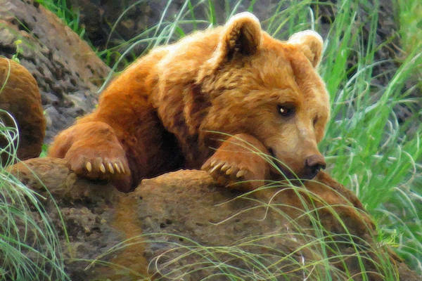 Painting - Young Grizzly Napping by Dean Wittle