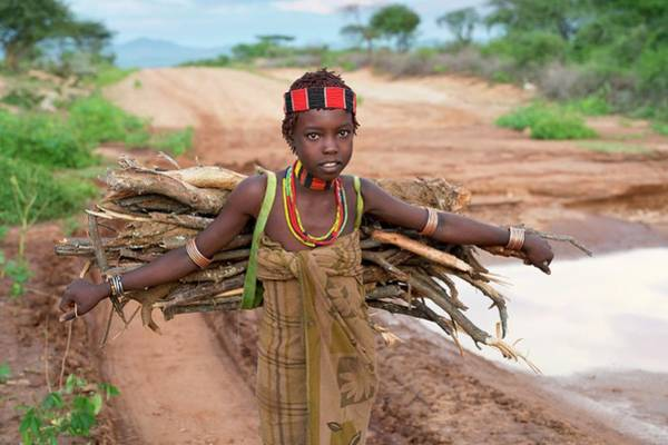 Indigenous People Wall Art - Photograph - Young Hamar Girl Collecting Fire Wood by Tony Camacho