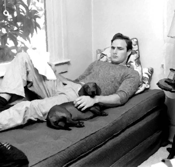 Photograph - Young Marlon Brando by Doc Braham