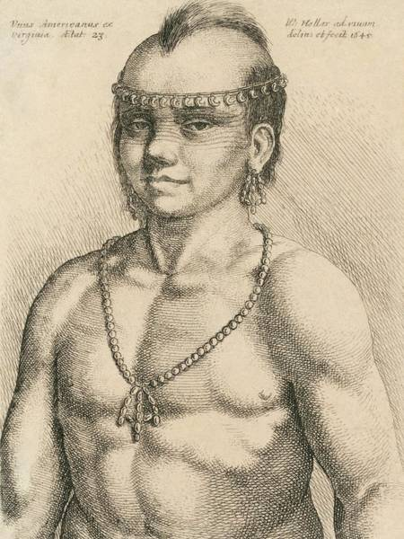 1600s Wall Art - Photograph - Young Native American Man by Library Of Congress
