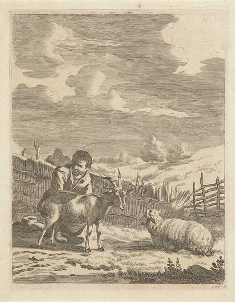 Herd Drawing - Young Shepherd With A Sheep And A Goat, Print Maker by Anonymous