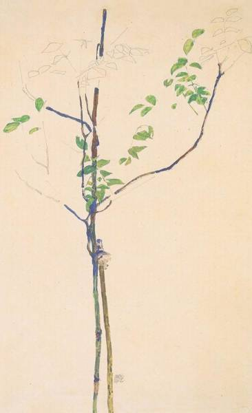 Painting - Young Trees With Support by Celestial Images