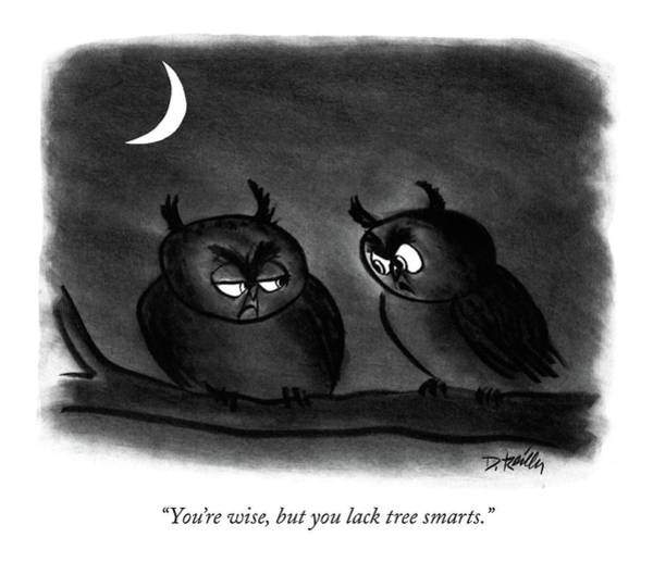 Owl Drawing - You're Wise by Donald Reilly